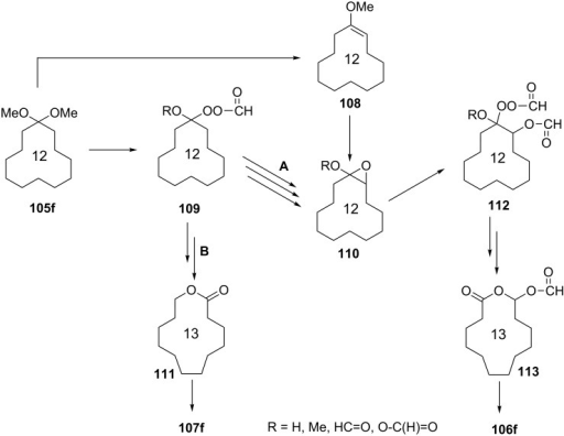 The proposed mechanism of the Baeyer–Villiger oxidation of acetal 105f.