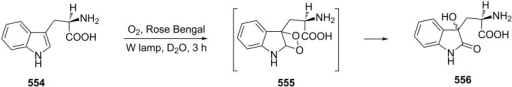The 1O2 oxidation of tryptophan (554) and rearrangement of dioxetane intermediate 555.