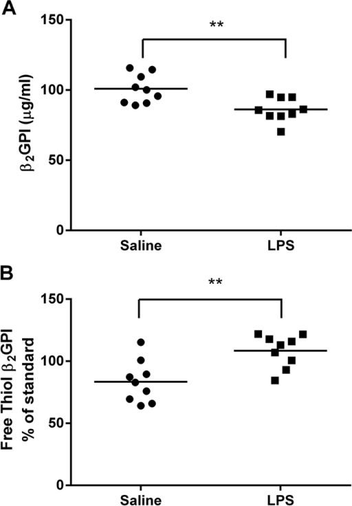 Total and free thiol β2GPI levels in mice following LPS injection.LPS decreased the (A) total but increased (B) free thiol β2GPI levels at 6 hrs after injection of LPS 1 μg/g body weight compared to injection of pyrogen free saline. n = 9 **p < 0.01. Unpaired two tailed Students t-test.