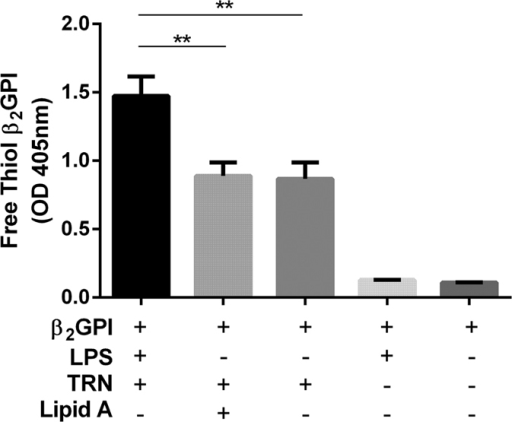 LPS but not Lipid A increases free thiol generation in β2GPI in the presence of TRX-1.Free thiol β2GPI generation increased only when β2GPI was incubated with LPS, but not Lipid A or PBS in the presence of reduced thioredoxin-1 (TRX-1). There was no free thiol β2GPI generation when β2GPI was incubated with LPS or PBS in the absence of TRX-1. Data are mean ± SEM, n = 3 **p = <0.01. One Way ANOVA with Tukey's multiple comparison test.