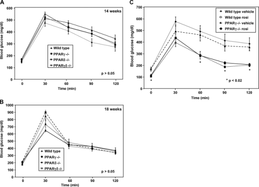 Glucose tolerance tests and insulin levels exhibited no significant differences in insulin sensitivity. A two-way ANOVA test was used to determine significance. A: After 14 weeks on the diet, the four groups of PPAR mice were equally diabetic and similarly insulin resistant (P > 0.05). After the mice were fasted overnight, basal blood glucose levels were measured (0 min) before intraperitoneal administration of 2 g/kg glucose. Blood glucose was assessed every 30 min after the glucose bolus. B: A second glucose tolerance test performed after an additional 4 weeks yielded similar results (P > 0.05). C: Wild-type and PPARγ−/− mice were treated with rosiglitazone (30 mg/kg) for 8 days. A glucose tolerance test was performed as previously described. Rosiglitazone improved insulin sensitivity in both wild-type and PPARγ−/− mice, whereas vehicle treatment did not demonstrate a decrease in blood glucose levels in either group (P < 0.02). Error bars represent SEM.