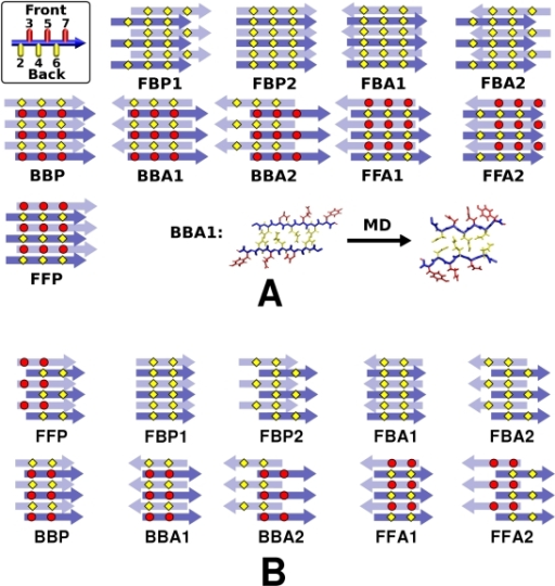 Ten possible β-sheet bilayer patterns of parallel β-sheets.(A) GNNQQNY and (B) NNQQ. The filament axis is vertical, and top/bottom layers are represented by dark/light arrows, where each arrow represents a single peptide. Top left in (A): A side view of a single GNNQQNY peptide with even-/odd-numbered side chains in yellow/red, which defines Front/Back faces of the parallel β-sheet. Bottom right in (A): relaxation of BBA1 after MD (axial view; cf. Fig. 5).