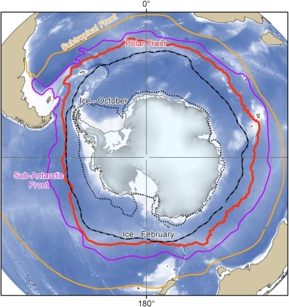 Major oceanographic features of the Southern Ocean.Mean positions of the major oceanographic fronts and summer and winter ice extents for the Southern Ocean [7], [14].
