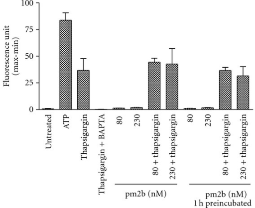 Calcium mobilization in fibroblasts. Fibroblasts were treated with pm2b at different concentrations immediately and 1 h before the test, and with thapsigargin (1 μM), BAPTA (10 μM, 30 min before), and ATP (10 μM). Data are expressed as mean ± SEM for duplicate measurements.