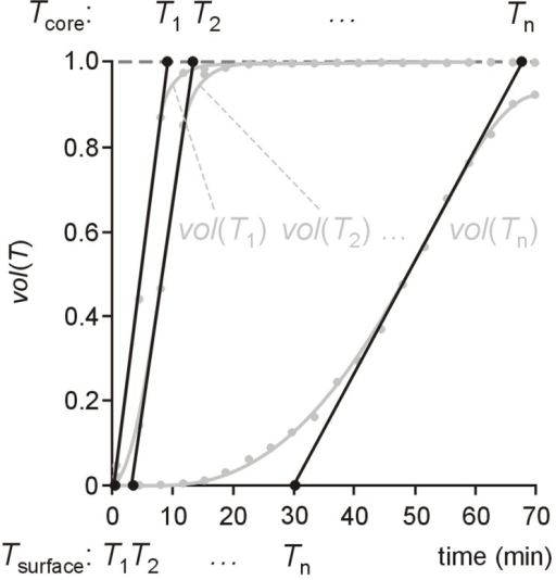 Determination of time courses of surface temperature and core temperature. For temperatures T1, T2, …, Tn time series of volume fractions vol(T1), vol(T2), …, vol(Tn) were derived from time-resolved temperature maps and interpolated by cubic splines. Times when tangents at half maximum of the respective volume fraction crosses 0 are interpreted as the times, when surface temperature Tsurface = T1, T2, …, Tn, times when they cross 1 are interpreted as the times, when core temperature Tcore = T1, T2, …, Tn.