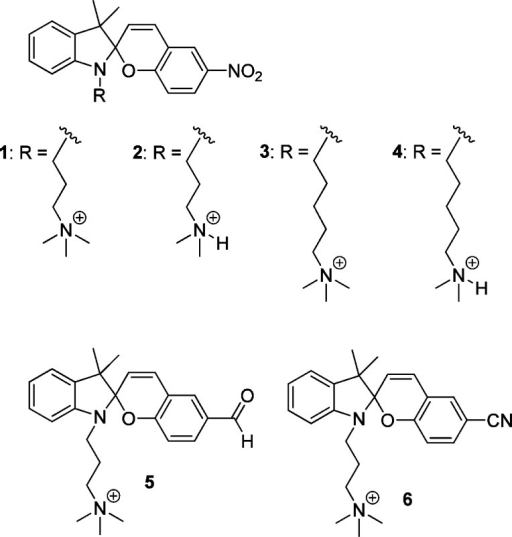 Structures of the closed spiro (SP) forms of the spiropyran derivativesstudied in this work.