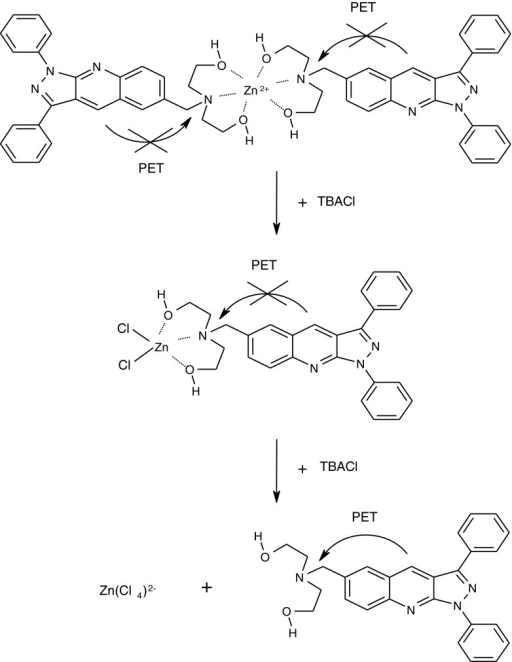 Reactions that occur during the titration of Zn(LL1)22+ complex by TBACl