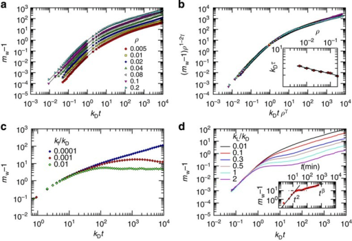 Polymerization kinetics in vitro is controlled by protein concentration.When proteins cannot enter or exit the system, the concentration is constant and controls the kinetics. (a) We report the average weighted mass as a function of time for different concentrations for kf=0 and kL=0. The curves show a crossover between two power laws and can be fitted as discussed in the main text. (b) All the curves from (a) can be collapsed into a single master curve when variables are properly rescaled by the concentration. This implies that the crossover timescales as a power law of the concentration as shown in the inset. (c) If we use a non-vanishing rate of polymer fragmentation (kf>0), the growth is limited. (d) Latentization (kL>0) leads to slowing down of the growth, which at long times resumes as in the case kL=0. This behaviour has been experimentally observed in vitro for neuroserpin, as shown in the inset (data from ref. 34). Curves are obtained by averaging over 10 realizations obtained from statistically identical initial conditions.