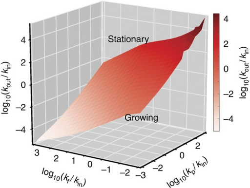 Mean-field phase diagram.Phase diagram of the mean-field model. The manifold in parameter space separates those parameters for which a steady state is obtained (the stationary phase) and those that lead to continual growth of polymers (the growing phase). The model used here has a polymer degradation rate that scales with polymer size i as i−3, up to a cutoff c=5, but similar phase diagrams are obtained for different size dependences and cutoffs and in much of the phase space the location of the transition is predicted well by a model with c=1, as discussed in the Supplementary Information.