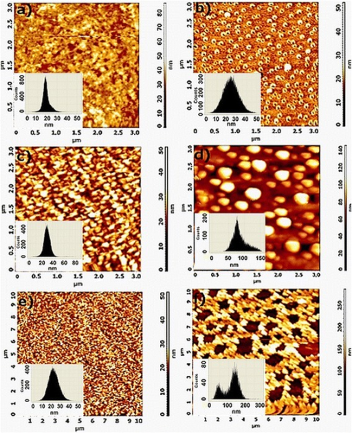 Morphological characterization of hybrid silica films by AFM. (a) A film prepared at a volume ratio of sol:PEG 1:0.05 after thermal treatment and (b) after exposure in silver nitrate solution for 17 h; (c) a film prepared at a volume ratio of sol:PEG 1:0.10 after thermal treatment and (d) after exposure in silver nitrate solution for 17 h; (e) a film prepared at a volume ratio of sol:PEG 1:0.15 after thermal treatment and (f) after exposure in silver nitrate solution for 17 h.