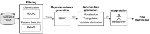 Empirical workflow of TCGA data to directed graph (BN) to undirected graph (JT) to Knowledge (J2K)