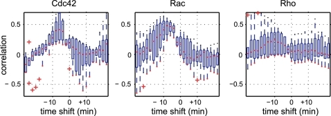 Time-shifted cross-correlation between GTPase activities and area differences.Rho family small GTPases Cdc42, Rac1 and RhoA were analyzed in terms of the time-shifted cross-correlation. We examined several cells for each GTPase. Each boxplot shows the first quartile (bottom of the box), third quartile (top of the box), median (red line) and outliers (red plus marks) for several cells (N = 9 for Cdc42, N = 6 for Rac1 and N = 6 for RhoA). Where there were no outliers, a red dot is shown at the bottom of the whisker. For Cdc42 and Rac1, the time-shifted correlation is significantly increased with negative time-shifts (results of the permutation test are shown in Table S1).
