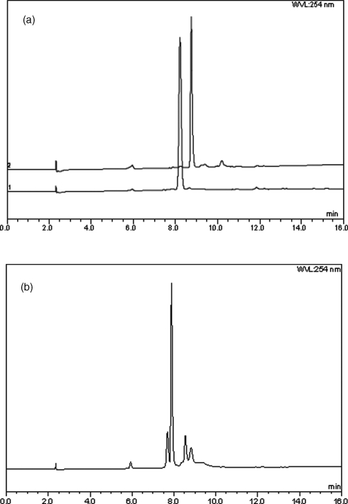 (a) HPLC of crude cyclisation precursor (lower trace) and crude cyclic peptide 10a (upper trace) following cleavage from the solid support with TFA/DCM (1:99). Conditions: Dionex C-18 column (see experimental), 5–95% solvent B in 10 min. (b) HPLC of crude cyclic peptide 10b following cleavage from the solid support with TFA/DCM (80:20). Conditions: as for Fig. 2a.