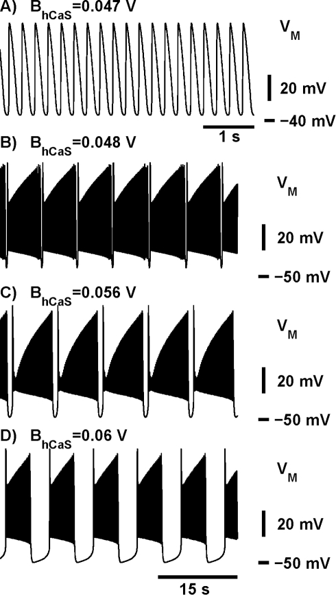 Transition from tonic spiking into bursting and the evolution of the bursting waveforms.The increase of the half-inactivation voltage of the slow calcium current,  shifts  towards more hyperpolarized values of  changing the activity from tonic spiking (A) to bursting (B–D). (A) For  = 0.047 V the model exhibits a periodic tonic spiking activity. (B–D) The increase of  up to 0.048 V shifts  towards the hyperpolarized value of  thus changing the activity from tonic spiking to bursting. (C) The increase of  to 0.056 V expands the interburst interval. (D)  = 0.06 V brings the value of the interburst interval close to the targeted value. The leak current parameters are the same as in Fig. 1.  was 0.031 V for A and D. Panels (B)–(D) have the same time scale.