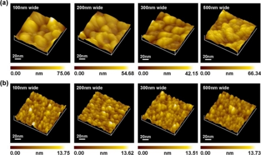 nanometer scale surface coating Need for nanometer-scale structures in a variety of applications can be seen in this figure, the strong pyrrole peaks indicate the surface coating of the.