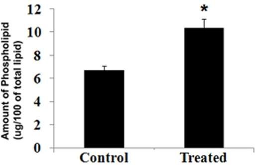 Treatment with carbofuran increased phospholipid in catfish livers.Injection of carbofuran and extraction of liver from catfish were performed according to 'Materials and methods'. Total lipid was isolated from membrane fraction of liver, and phospholipid was estimated from total lipid. * indicates that the value is statistically significant, at p<0.05.