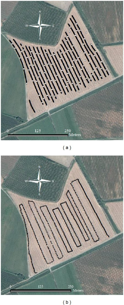Measured transects with soil sampling positions for the online soil measurement (a). Measured transect for the NDVI measurement (b).