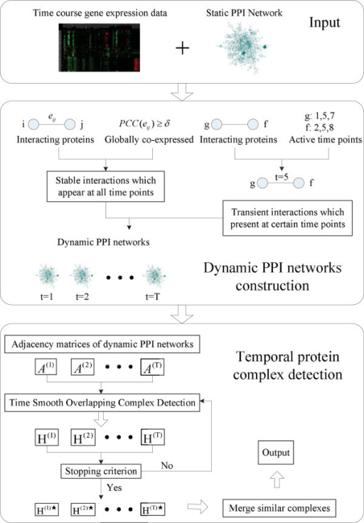 Schematic overview of the algorithm. TS-OCD consists of two stages. First, it constructs dynamic PPI networks by integrating physical protein interaction data and time-course gene expression data. Second, it detects temporal protein complexes from the constructed dynamic PPI networks.