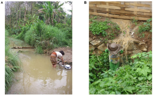 In developing countries the lack of adequate infrastructures means that contaminated water is used for domestic activities (A). During the rainy season when river and stream flow is high and temperatures are elevated children often play in water contaminated with latrine overflows (B).