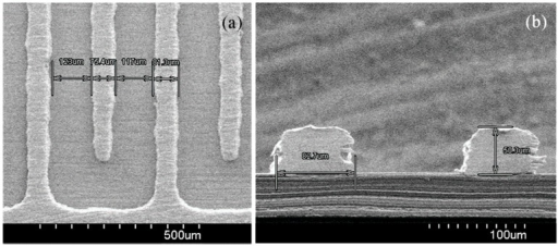 SEM images of the fabricated interdigitated electrode (IDE): (a) top view and (b) cross-sectional view of the IDE.