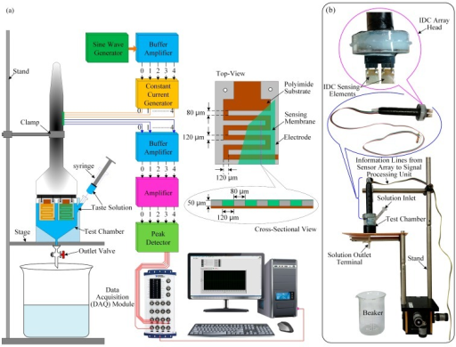 Experimental setup of the IDC array taste sensing system: (a) schematic diagram of the taste sensing system; and (b) photograph of the different parts of the IDC sensor array.
