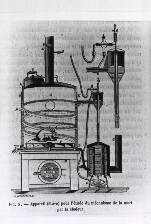 <p>An apparatus for the study of the effects of heat on animals.</p>