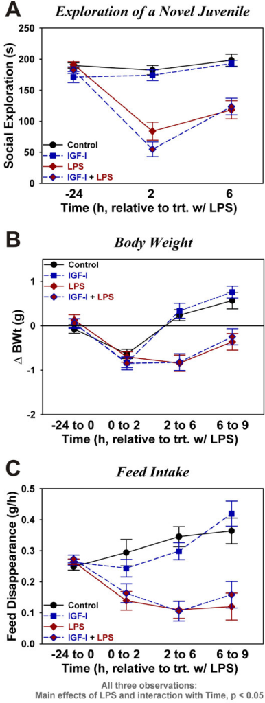 Central IGF-I does not affect central LPS-induced sickness. Social exploration, time spent investigating a novel protected juvenile mouse, was assessed as an index of sickness behavior (A). Body weight change (B) was determined over the indicated time intervals relative to LPS treatment. Feed disappearance over the same intervals (C) was used as an estimate of feed intake. Data were analyzed as repeated measures by ANOVA. n = 16 to 19 for the data in (A) and n = 11 to 13 per treatment for data in (B) and (C)