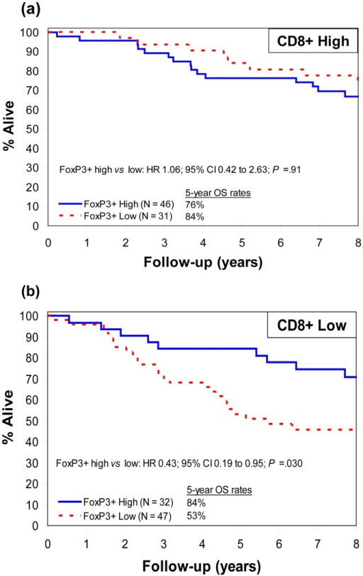 Patient survival according to CD8+ and FoxP3+ T-cell density.Overall survival (OS) in resected colon carcinomas with (a) high vs (b) low density of cytotoxic CD8+ T-cell infiltration in tumor stroma according to FoxP3+ T-cell density in tumor stroma (P for interaction  = .040). Hazard ratios (HR) are adjusted for age, stage, and tumor grade.