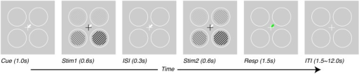 Task design. Subjects performed a contrast-discrimination task in one of four locations. On each trial, four contrast gratings appeared in two temporal intervals (Stim1 and Stim2) separated by an inter-stimulus interval (ISI). During one of the two intervals (Stim2 for this figure), the contrast in one location (target, upper-right for this figure) was incremented by a threshold contrast. After both stimulus presentation intervals, a green response-cue indicated the target location and subjects reported the interval during which they perceived the higher contrast with a key press (Resp). At the beginning of each trial (Cue), a white line pointed to one (or, on alternate trials, more than one) of the possible target locations, thus varying the prior information given to subjects regarding which location they would be asked to respond about. Trials were separated by an inter-trial interval (ITI) which lasted 1.5 s for tasks performed outside the scanner and 1.5–12.0 s, pseudo-randomized, inside the scanner.