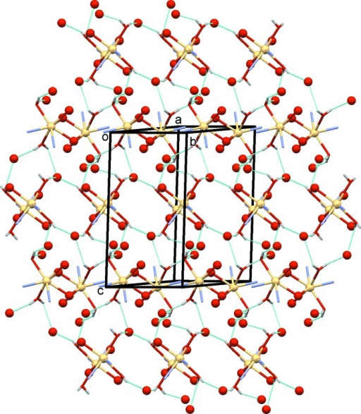 A view normal to plane (10) of the O—H⋯O hydrogen bonds (dashed lines; see Table 2 ▸) within the polymer network, involving the carboxyl­ate O atoms (red balls) and the coordinating water mol­ecules. The C atoms and C-bound H atoms of the ligand have been omitted for clarity.