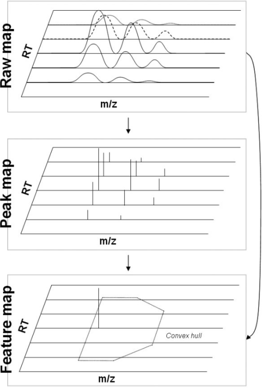 The data reduction concept of OpenMS. A raw map (top) which is first reduced to a peak map (middle) and finally to a feature map (bottom). The direct reduction of raw to feature map is also possible.