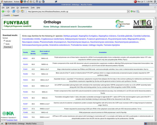 "a) FUNYBASE Orthologs Page. Entries include ""Ortholog Family Name"", ""Mean Identity"", ""Best Model of evolution"" and ""Annotation""."