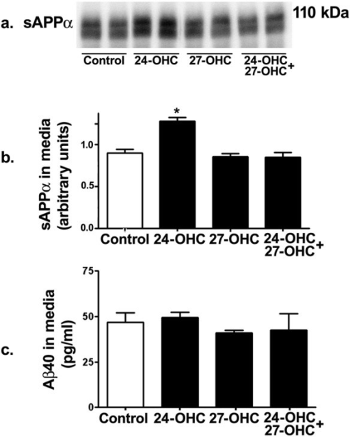 24-OHC increases processing of APP via the non-amyloidogenic pathway. Western blot (a) and densitometric analyses (b) demonstrating increased levels of sAPPα in medium of 24-OHC-treated cells. Treatment with 27-OHC or a mixture of 24-OHC + 27-OHC did not influence sAPPα levels. Levels of Aβ40 were not affected by treatment with 24-OHC, 27-OHC, or a mixture of 24-OHC + 27-OHC compared to levels in control cells (c). *p < 0.05 (One way ANOVA followed by Dunnett's multiple comparison test).
