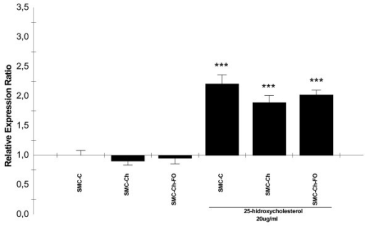 25-hidroxycholesterol effects on caspase-3 expresión in the cell culture model. caspase-3 mRNA quantification in SMC cultures (SMC-C, SMC-Ch, SMC-Ch-FO) and SMC cultures treated with 20 μg/mL 25-hydroxycholesterol for 24 h. mRNA levels were quantified by semiquantitative real-time reverse-transcription PCR. Results are shown as relative expression ratio of caspase-3 in SMC cultures with respect to control culture and expressed in comparison to reference gene β-actin. *P < 0.05, ** P < 0.01, *** P < 0.001 vs. SMC-C, +P < 0.05, ++P < 0.01, +++ P < 0.001 vs. SMC-C treated with 20 μg/mL 25-hydroxycholesterol.