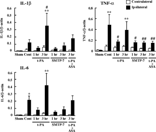 Comparative study of mRNA expression of IL-1β, TNF-α, and IL-6. SMTP-7 and t-PA were administered at 1 or 3 h after ischemia. ASA was administered with t-PA at 3 h after ischemia. Samples were taken at 24 h after ischemia. Data represent the mean ± SEM of six experiments. *P < 0.05 and **P < 0.01 vs ipsilateral hemisphere of sham-operated group. #P < 0.05 and ##P < 0.01 vs ipsilateral hemisphere of control group