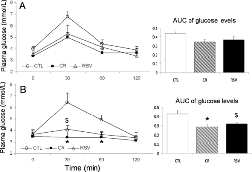 Plasma glucose concentrations and area under curves (AUC) during oral glucose tolerance test in control (CTL), calorie restricted (CR) and resveratrol supplemented (RSV) animals.A: after 21 months of treatment and B: after 33 months of treatment. Data are expressed as means±SEM. Statistical significance (*) p<0.05 when comparing CTL and CR animals, ($) p<0.05 when comparing CTL and RSV animals.