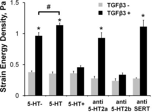 5-HT signaling modulates TGFβ3 induced AV cushion stiffness.Physiological dosages of 5-HT (470 nM, 5-HT) exacerbated TGFβ3 stiffening, while elevated dosages (47 µM, 5-HT+) eliminated it. Molecular inhibition of the 5-HT2a receptor (MDL100907 10 nM, anti-5-HT2a) and the serotonin transporter (Fluoxetine 10 µM, anti-SERT) did not affect TGFβ3 mediated biomechanical stiffening. Inhibition of the 5-HT2b receptor (SB204741 35 µM, anti-5-HT2b) however eliminated the stiffening effect of TGFβ3. mean ± SEM, n≥6, *p<0.0001 t-test relative to control, #p<0.05 2-way ANOVA with Tukey post-hoc test.