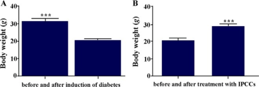 A) Mean body weight of mice before and after (3 weeks) induction of diabetes; B) Mean body weight of diabetic mice before and after (3 weeks) treatment with VSEL stem cells. Body weight of diabetic mice differed significantly before and after treatment. Asterisks in figure denote statistical significance (p = 0.0002).