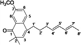 7-Methoxy-2,2-dimethyl-4-octa-4′,6′-dienyl-2H-napthalene-1-one.