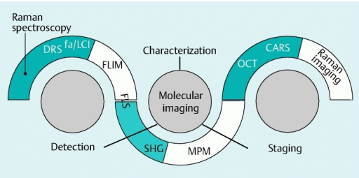 Stylized Venn diagram showing predominant targets and potential relationships/overlaps between different biophotonic techniques in detecting, characterizing, and staging diseases at endoscopy. DRS, diffuse reflectance spectroscopy; fa/LCI, frequency-domain angle-resolved low coherence interferometry; FLIM, fluorescence lifetime imaging microscopy; FLS, fluorescence lifetime spectroscopy; SHG, second harmonic generation; MPM, multiphoton microscopy; OCT, optical coherence tomography; CARS, coherent anti-Stokes Raman scattering.