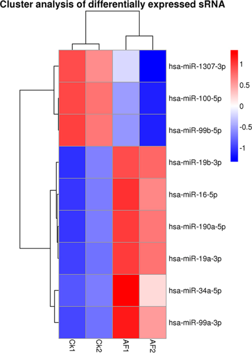 Hierarchical clustering of miRNA expression.miRNA profiles from four groups of HepG2 were clustered. Treatment groups are in columns, miRNAs in rows. Cluster analysis based on log10 (TPM + 1). The red means up-regulated miRNAs, and the blue means down-regulated miRNAs.