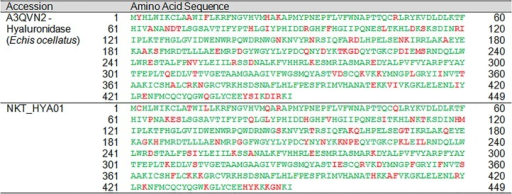 Pairwise sequence alignment of hyaluronidase transcript from the venom gland transcriptome of NK-T in comparison to the annotated hyaluronidase sequence.Green, consensus sequence; red, sequence diversification; black, mismatched sequences.
