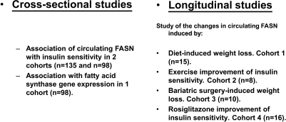 Summary of the studies performed on circulating FASN levels.