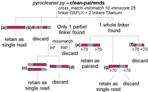 Paired-end cleaning strategy. Reads having no linker (a) are retained as single reads. If multiple linkers are present (b) in the same read, the read is discarded. In cases where the linker is partially found, meaning that the number of mismatches is lower than a threshold, only reads where the linker is located at the beginning or at the end (c) are saved as single reads, others (d) are deleted. Reads where the entire linker is present and not to closely located to one end (e) are saved as paired-end reads. In other cases, sequences are saved as single reads only if the linker is located far enough from one end (g), while others (f) are deleted.