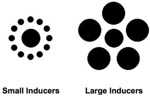 Ebbinghaus–Titchener figures used as stimuli in the experiments. The central dots of the figures are the same physical diameter.