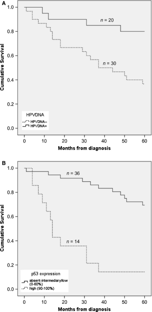 Effect of human papillomavirus (HPV) status and p53 expression on 5-year overall survival. (A) Cumulative survival in the HPV DNA-positive group and the HPV DNA-negative groups. (B) Cumulative survival in patients with absent-intermediary/low (0–60%) and high (90–100%) p53 expression. Notably, no patients showed 61–89% p53 expression.
