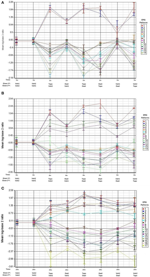 EPIG patterns across treatments groups 1, 6, and 24 h post-treatment. The average of the log base 2 ratio (treated sample to the average of the time-matched control) from the top 6 expression profiles with the highest degree of correlation are plotted and displayed on the y-axis. The x-axis contains the treatments and the order of exposure. Oxali = oxaliplatin (15 mg/kg) and Topo = topotecan (4.7 mg/kg). (A) Patterns extracted by EPIG of mRNA from bone marrow samples that were collected 1 h post-treatment administration. The row labeled 1st denotes which agent was administered first. (B) Same as A except analysis of mRNA from bone marrow samples that were collected 6 h post-treatment. (C) Same as A except analysis of mRNA from bone marrow samples collected 24 h post-treatment.