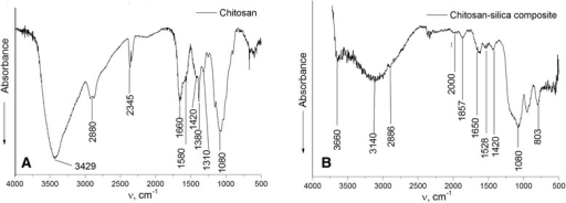 FTIR spectra of chitosan (A) and chitosan-silica composite (B).