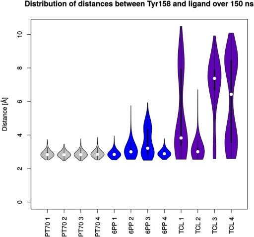 Violin plots of distances between the phenolic oxygen of Tyr158 and the respective ligands.White dots depict the medians. Thick vertical lines indicate the interquartile ranges (IQR), thin lines extend to 1.5 ⋅ IQR from the third and first quartile, respectively. The shape of the violins illustrates the kernel density estimation of the respective distribution.