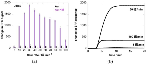 Binding affinity of E. coli UTI89 (108 cfu/mL) to Au and Au-HM as a function of flow rate. (a) Bar graph of change in SPR signal upon addition of E. coli UTI (108 cfu/mL); (b) SPR sensogram for three different flow rates; (c) binding affinity of E. coli UTI89 Q133K (108 cfu/mL) and UTI89 ∆fimH (108 cfu/ml) to Au-HM surfaces as a function of flow rate.